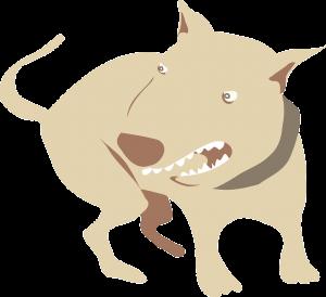 schade door een hondenbeet